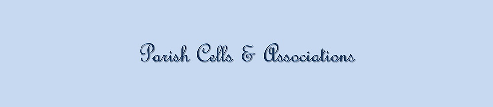 cells and associations